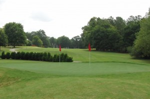hedingham chipping green
